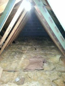 Attic Before Flooring